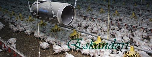 سیستم گرمایش و تهویه مرغداری
