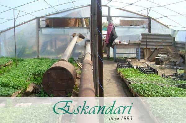 ساخت گلخانه و تجهیزات گرمایشی